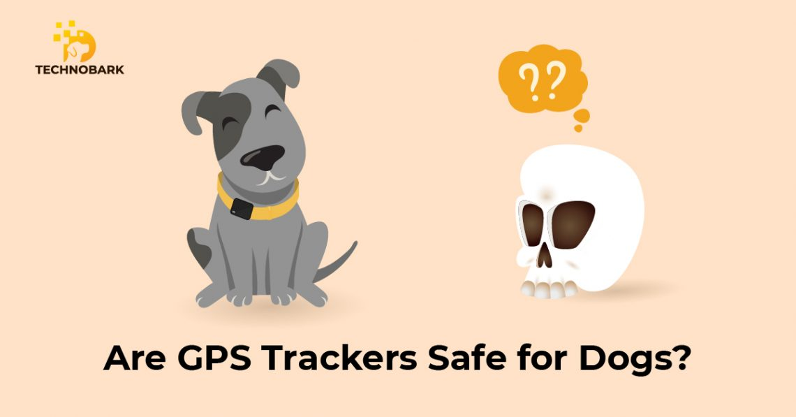Happy dog with gps device in it and with the quationed skull on the right side.