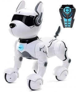 Top race robot dog