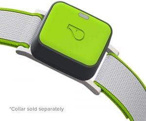 Whistle Go Explore smart tag for dog's collar (note: the collar sold separately)