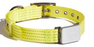 Whistle Switch smart collar